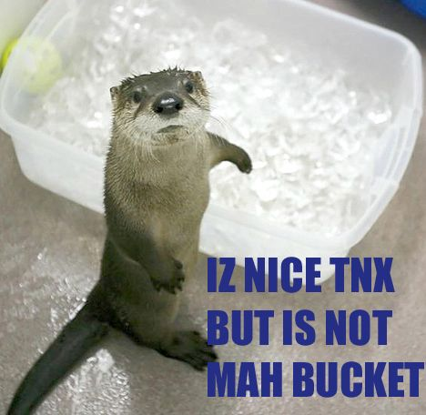 Otter with ice-bucket